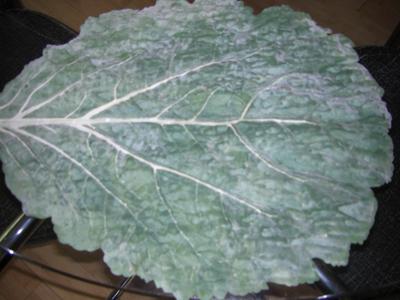 leavesofsassbegin1.jpg