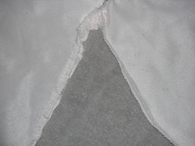 TentAppears.jpg